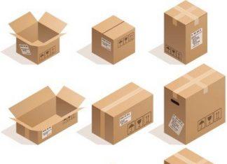 thùng carton là gì